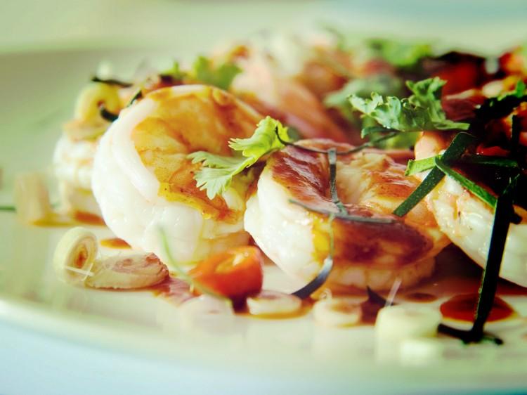 shrimp_06